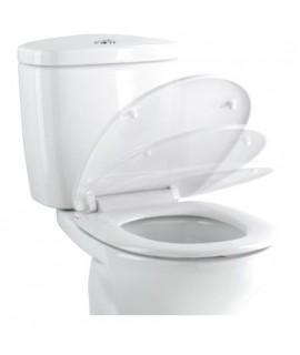 Toilet seat softclose